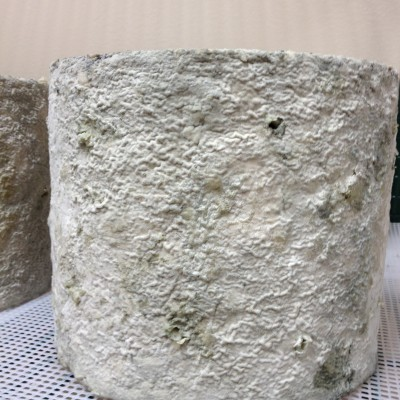 Whole Round of Upper Bench King Cole blue cheese